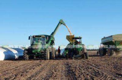 """Federación Agraria denuncia """"retención encubierta"""" por parte de Monsanto a los productores"""