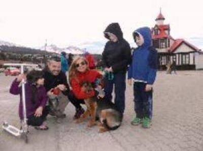 Pese al clima, 5 perros consiguieron familia