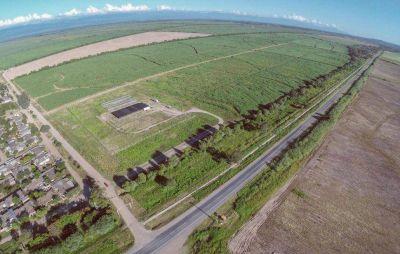 Construyen parque foresto industrial
