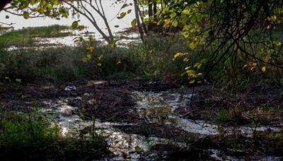 Planta cloacal desbordada arroja desechos al lago
