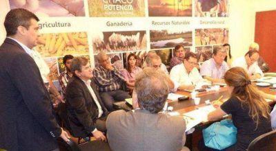 Provincias algodoneras acuden a la Nación por el picudo