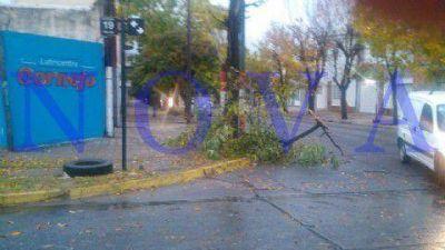 El temporal de viento y lluvia se hizo sentir en el interior de la provincia de Buenos Aires