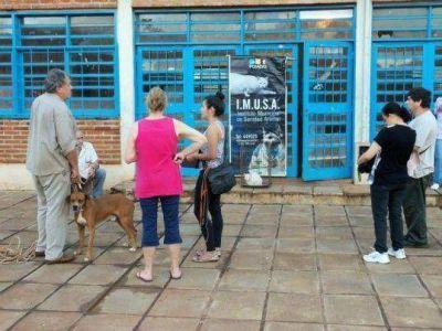 Se informa el cronograma del servicio de castraciones para mascotas