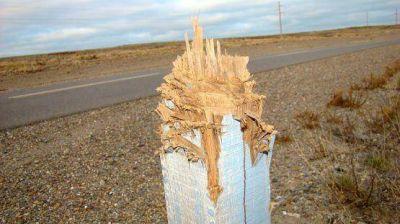 Destruyeron con un hacha carteles de ruta y poste de luz