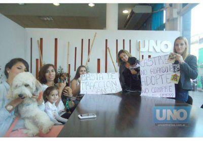 Proteccionistas invitan el 29 a la marcha por los derechos de los animales