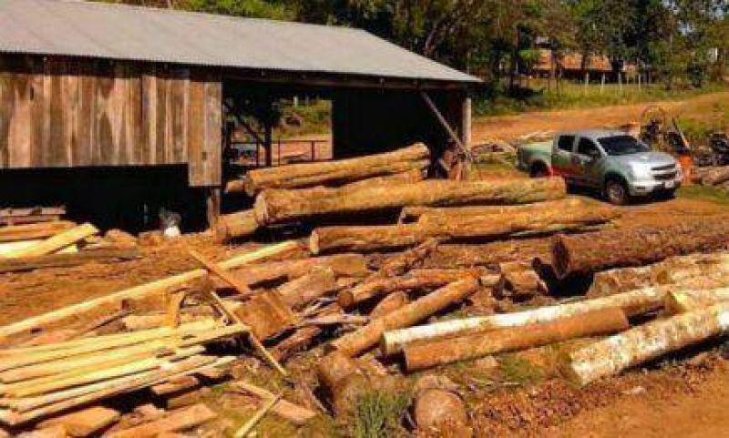 Puerto Piray: Empleados madereros se manifiestan frente al aserradero