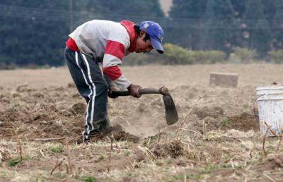 El trabajo esclavo representa la mitad de las víctimas de la trata de personas