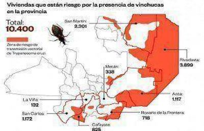Cerca de 78 mil personas estarían infectadas con el mal de Chagas en Salta