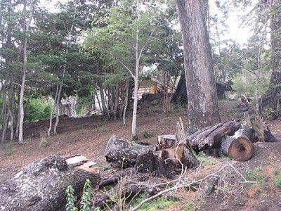 La oposición busca que el Ejecutivo explique el conflicto de tierras Puerto Elma- La Posada