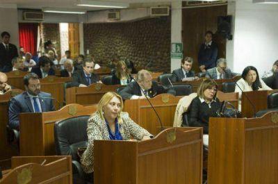 Se dilata el tratamiento de las PASO provinciales en Diputados
