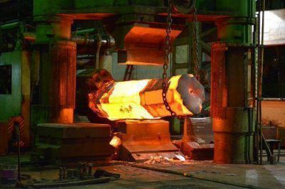 Zapla anunci� freno de inversiones y cese de producci�n de aceros especiales por hostilidad de la Secretar�a de Trabajo