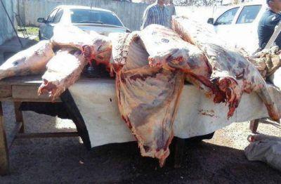 Mariano I. Loza: secuestran más de 500 kilos de carne vacuna faenada clandestinamente