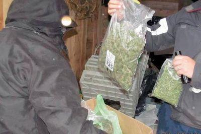 Secuestran drogas por valor de medio millón de pesos