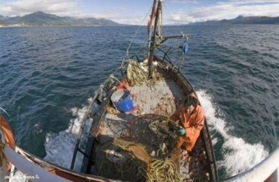 Avanzan proyectos para mejorar la competitividad del sector pesquero artesanal