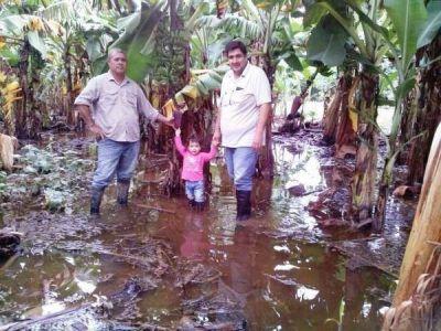 Avisoran oscuro futuro ante perdidas millonarias en cultivos de pequeños productores del norte por intensas lluvias