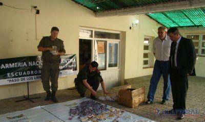 Gendarmería secuestró 125 kilos de piedras semipreciosas en Paso de los Libres