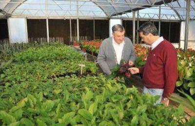 Avanza la producción en el Centro de Biotecnología Agroforestal