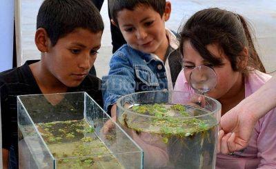 Se viene la Semana de la Ciencia en el Predio del Conicet Santa Fe
