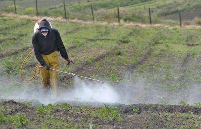 Los productores están preocupados por una regulación a los agroquímicos
