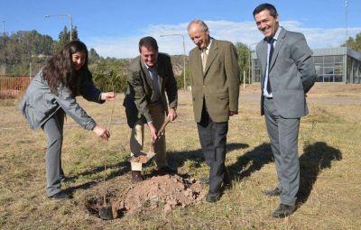 La UCIM plantó 100 árboles en el Parque