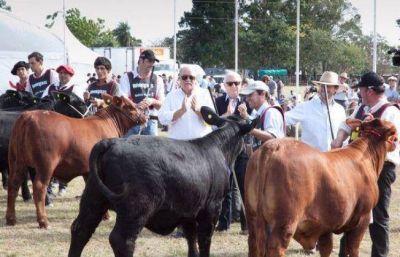 Comenz� el desfile de Brangus en la Sociedad Rural del Chaco