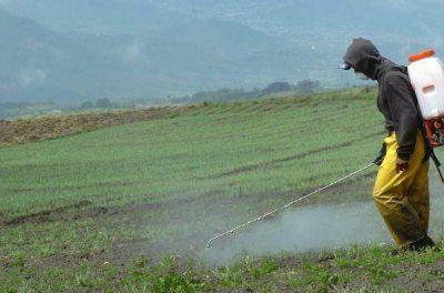 Marcha atrás en la prohibición del uso de agroquímicos