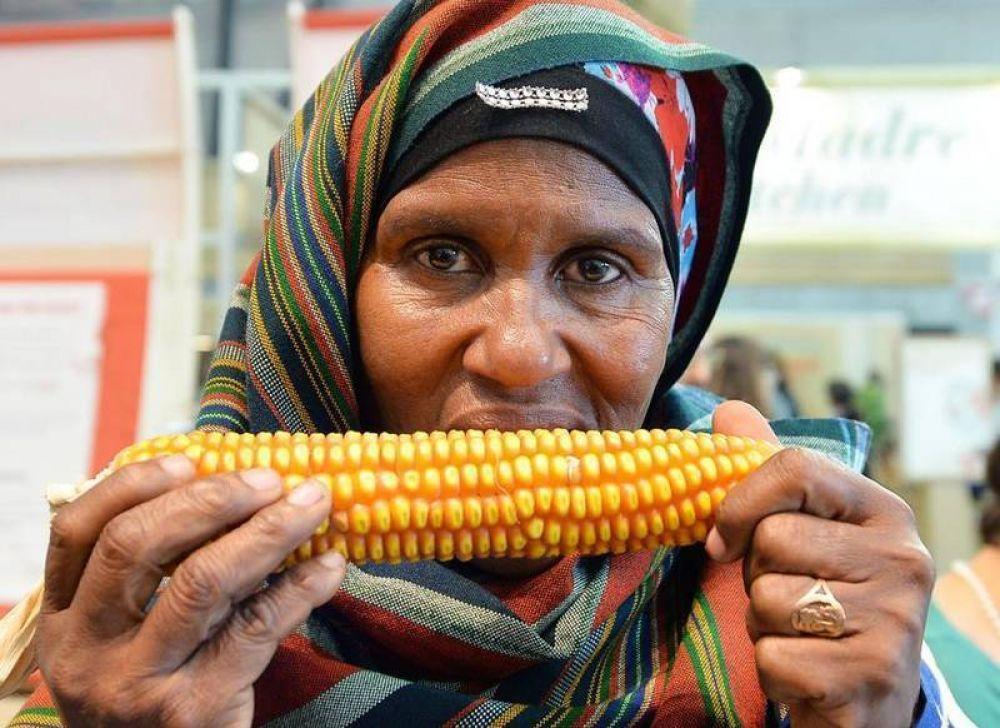 Francisco a los representantes de la FAO: el acceso a la comida es un derecho