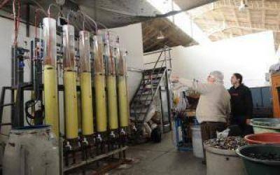La Universidad de La Plata creó la primera planta de reciclado de pilas del país