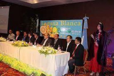 Lanzan nueva edición de la Fiesta Nacional del Pomelo