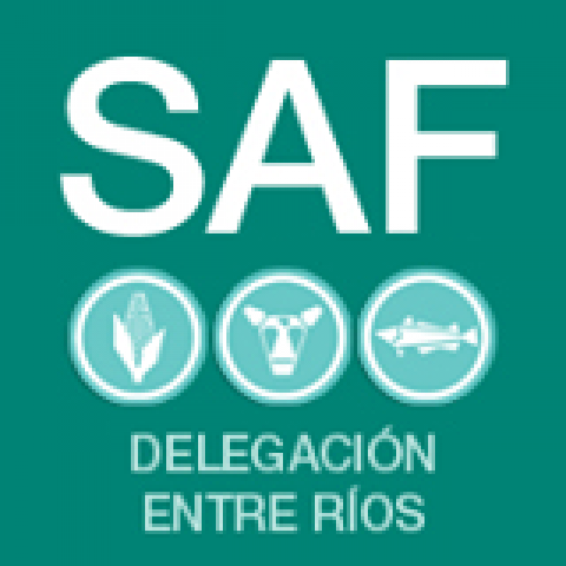 Trabajadores de Agricultura Familiar nucleados en ATE preparan otra movilización ante la falta de respuestas