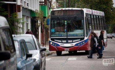 ¿Qué dice el pliego sobre la concentración empresaria en el transporte público?