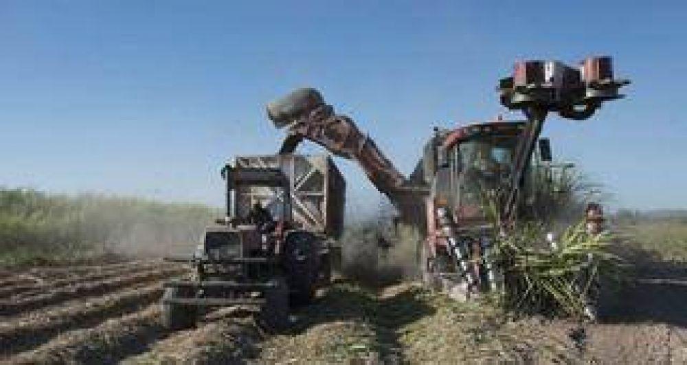 Trabajadores azucareros ratificaron el paro