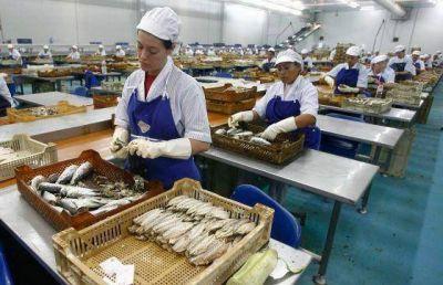 """Pesca: """"El cupo de captura no alcanza para dar trabajo a la gente en tierra"""""""