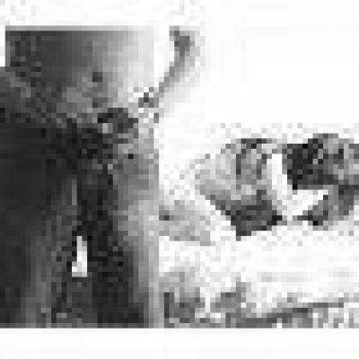 San Luis: investigan dos casos de abusos a dos menores
