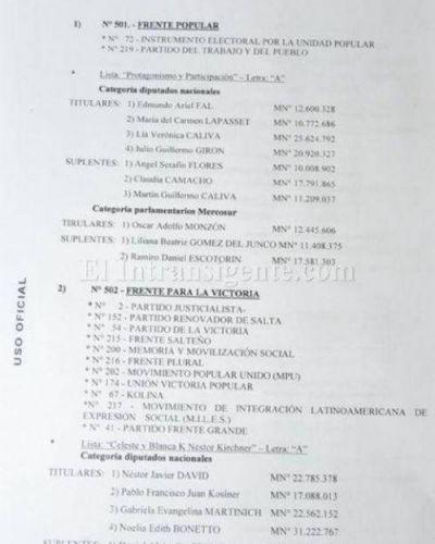 PASO nacionales: Estas son las listas del FpV oficializadas en Salta