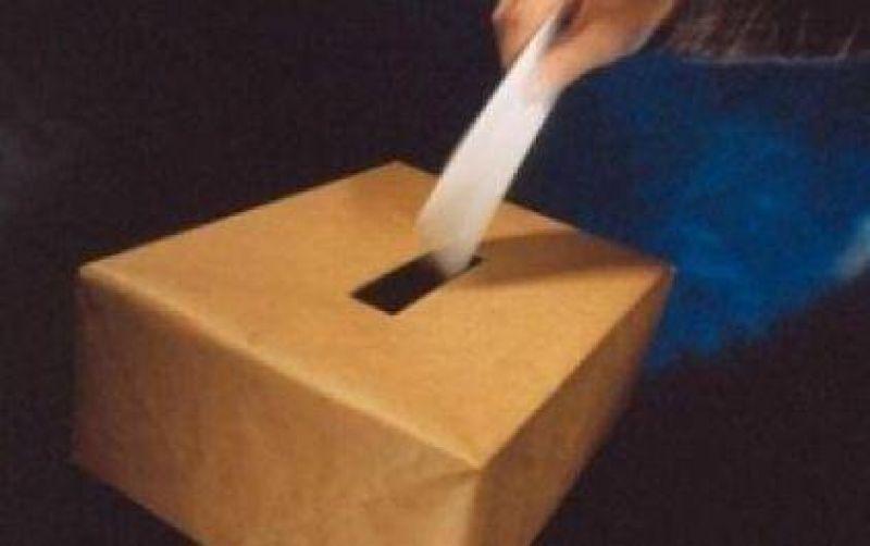 El 76, 2% de los santafesinos particip� de las elecciones internas.