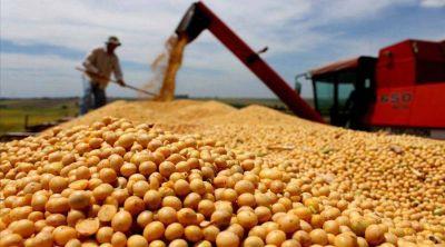 Productores de Salta perder�n $1.000 millones con los granos