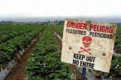 Investigador se inspira en el Cor�n para remplazar a los pesticidas nocivos