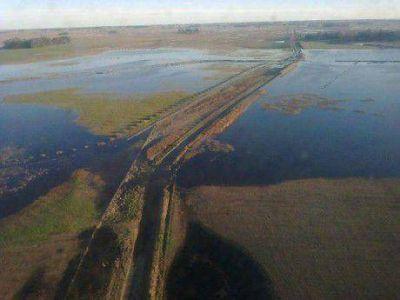 Miles de hect�reas inundadas en el distrito de General Viamonte