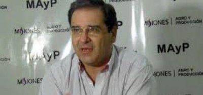 Yerba: Proponen reducir el porcentaje de palo para elevar la demanda de hoja verde