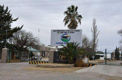 SENASA: ocho d�as de conflicto, con impacto en La Pampa