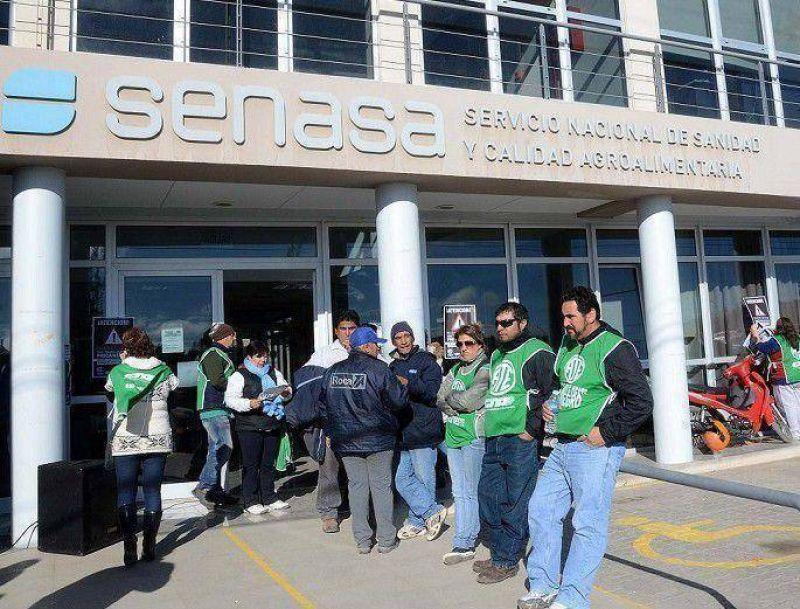 Trabajadores de Senasa pararán por otros 12 días: podría faltar la carne