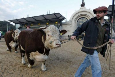Arrancó la Expo Rural de Palermo