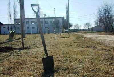 Arbolado Urbano entregó 500 plantas gratis