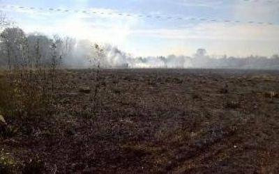 Importante incendio de pastizales en el predio de la Universidad de Luj�n