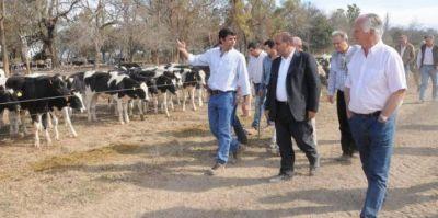 Manzur mantuvo un encuentro de trabajo con productores lecheros
