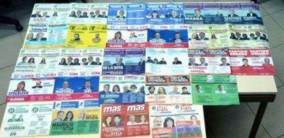 En el Chaco habr� 17 boletas electorales en las PASO nacionales de este domingo