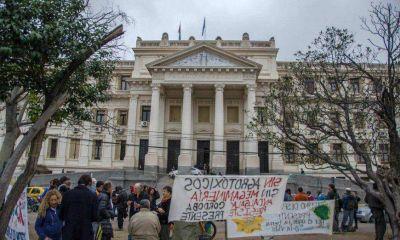 Celebran fallo de TJS que ratificó la constitucionalidad de ley que prohíbe la minería a cielo abierto