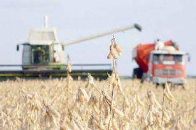 Chaco liquidó más de 479.208 toneladas de soja durante la actual campaña