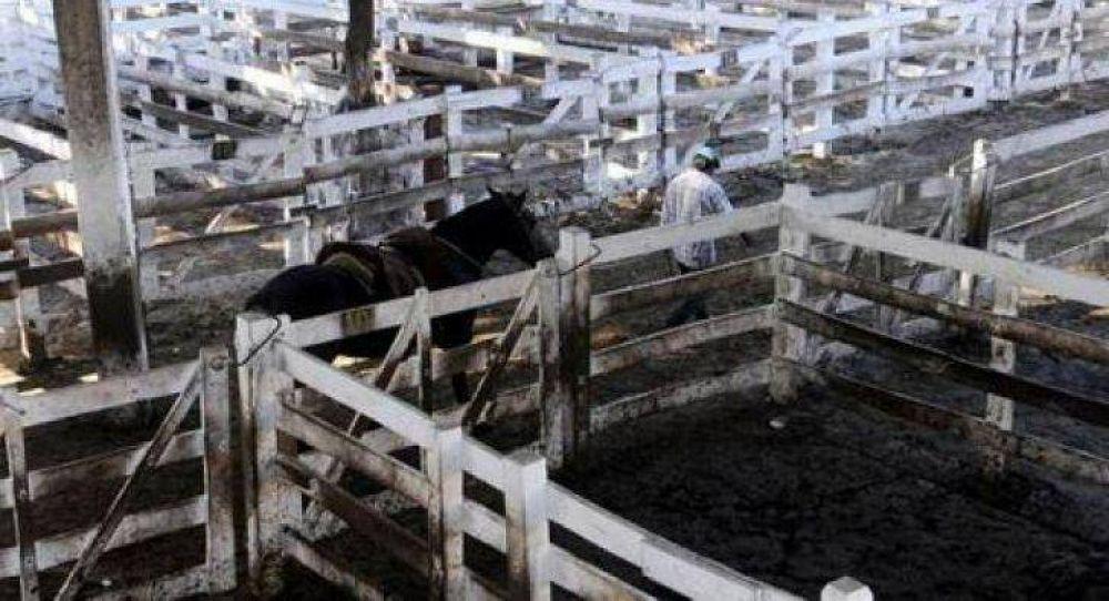 Productores rurales anunciaron un paro de cinco días para fin de mes